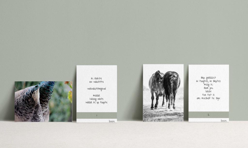 Carddeck met inspirerende foto's en verhaaltjes om emotie om te zetten in woorden